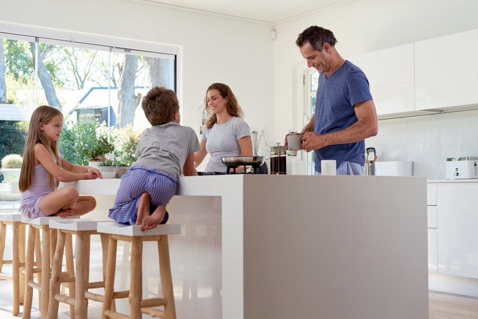 BIOnyx Keukenreiniger