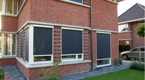 BIOnyx RVS reiniger screens